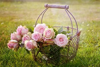 שזירת פרחים עם שולמית