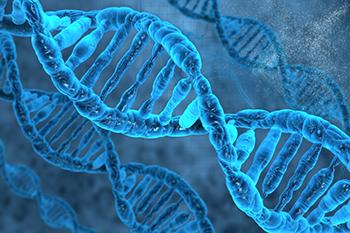 הרצאה: פענוח סודות ה- DNA