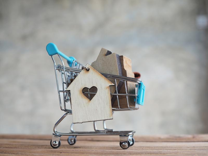 """הרצאה על דירה למגורים """"לשכור או לקנות"""""""